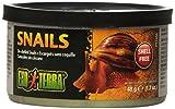Exoterra Aliment Escargots sans Carapaces pour Reptiles et Amphibiens 48 g