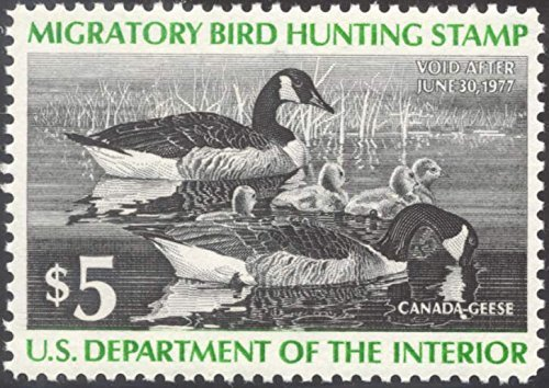 Scott RW43 $5 Federal Duck Stamp Mint Very Fine. Never Been Hinged. by USPS -