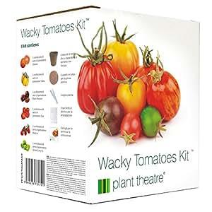 Plant Theatre Wacky Tomatoes Kit - 6 diverse varietà da coltivare - Regalo ideale
