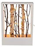 levandeo Holzrahmen 22x30cm Weiß Birke Äste LED Lichter Warmweiß Deko Zweige Weihnachtsdeko Tischdeko Weihnachten Xmas Christmas LED-Deko