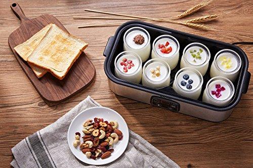 comprare on line Yogurtiera Elettrica Schermo LED Aicok Yogurtiera Compatta in Acciao Inox con 8 Vasetti in Vetro 180ml, Temperatura Regolabile, Yogurtiera per Yogurt Naturale, Cremoso, Frutta, Soia Argento prezzo
