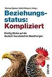 Beziehungsstatus: Kompliziert: Dreißig Blicke auf die deutsch-französischen Beziehungen - Roger Bichelberger