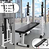 Physionics - Banc de Musculation Pliable avec Support pour Haltère et Station à Dips
