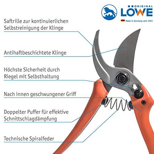Schere Löwe  Obstschere 14107 - 2