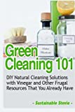 Best Green Cleanings - Green Cleaning 101: DIY Natural Cleaning Solutions Review