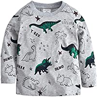 Tkria Little Kids Boys Jumpers Dinosaur Sweaters Sweatshirt Pullover Clothing Shirts Casual Tops Cotton Tee Age 2 3 4 5 6 7 8 Years