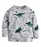 Tkria Little Kids Boys Dinosaur Sweatshirt T-Shirt Long Sleeve Tops Casual Cotton Tee Shirts Age 2-8 Years