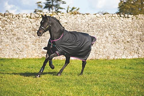 Horseware Amigo Hero 6 6 6 Turnout Medium 200g - nero viola & Mint | Nuove varietà sono introdotte  | Superficie facile da pulire  | Lascia che i nostri beni escano nel mondo  | caratteristica  528689