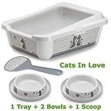 Katze groß Katzentoilette mit Rand 51x 39x 19cm + 2Schalen 0,2l + Scoop Box Schüssel