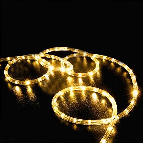 LED Ghirlanda luminosa,KINGCOO Impermeabile 39 ft 12 M 100 LED aspirante a energia solare tubo flessibile tubo Rope filo di rame di Natale Stellate di luci per il matrimonio Outdoor Garden Party (Bianco caldo)