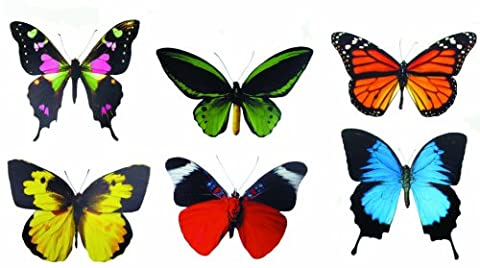 Discover Accents 36-Piece 22 x 15 x 1 cm Butterflies,