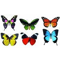 Discover Accents - Collezione di farfalle, 36