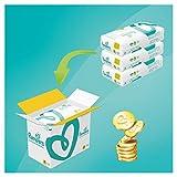 Pampers Premium Protection taglia 4 (9-14 kg) (8-16 kg) 168 Pannolini, Confezione Mensile