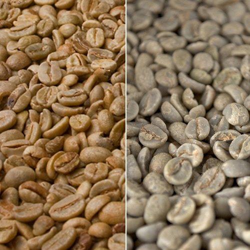 Rohkaffee Äthiopischer Sidamo 1kg -  Probierpaket