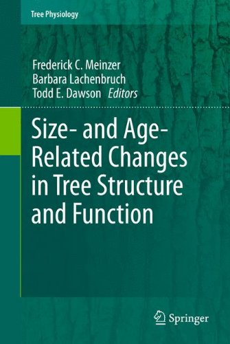 Size- and Age-Related Changes in Tree Structure and Function (Tree Physiology, Band 4)