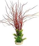 Sydeco Aquariumpflanze Aqua Hair Leaves Plant, rot, Höhe 35 cm