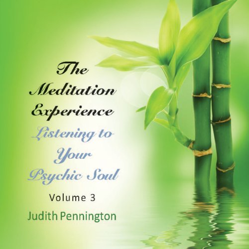 The Meditation Experience: Listening to Your Psychic Soul, Vol. 3  Audiolibri