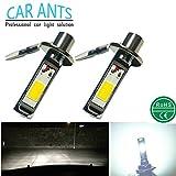 Car Ants Auto Parts Extrem helle COB Chips H1 H3...