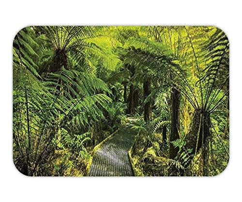 ZKHTO Doormat Rainforest Decoration Set Rainforest Walkway Board FernWet Rural Spring Traveling Destination Nature Zen Bathroom Accessorie Extralong Green.15.7X23.6 Inches/40X60cm