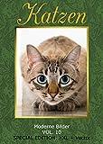 Produkt-Bild: Bilderschatz Katzen 680 lizenzfreie XXL Bilder auf DVD für Web und Print Vektor