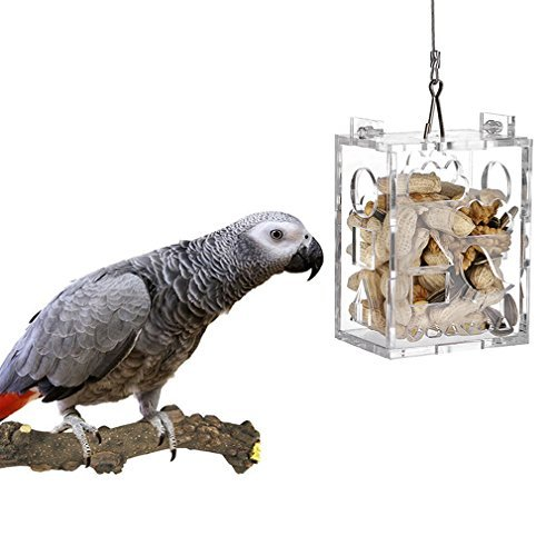 Parrot Creative Foraging Toy Feeder Bird Intelligence Growth Cage Acrylic Box Toys Big Medium by Kintor (Big Size 4x2.8x4.8inch) by Kintor