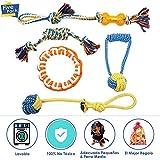 SlowTon Juguetes para Perros, Juego de 5 Juegos de Cuerdas Juego de Juguetes para la dentición del Cachorro Juguetes para Tirar y Tirar Jugar con un algodón 100% Natural Juguete