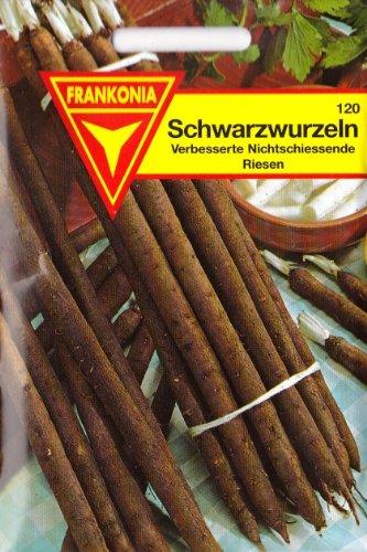 Schwarzwurzeln, Samen für ca. 4 lfm.