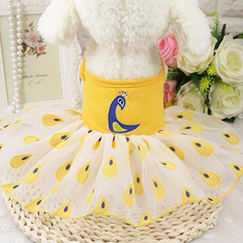 shanzhizui Hundekleidung Festliches Kleid des Haustieres Streifenschlinge Net Garn Rock Frühling und Sommer Röcke Teddy Kleidung, 022, M -