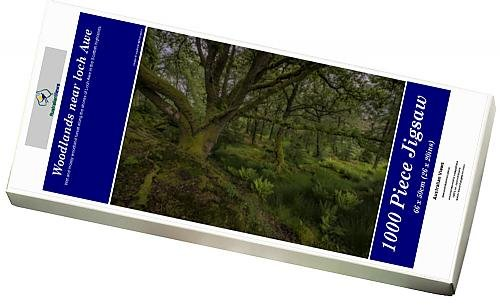 photo-jigsaw-puzzle-of-woodlands-near-loch-awe