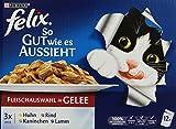 Felix So gut wie es aussieht Katzenfutter Fleisch Mix, 1er Pack (1 x 12 x 100 g) Beutel