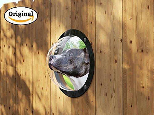 Gardenscout - Das Sichtfenster ins Freie für ihren Hund, Katze oder Ihr Kind. Ein Bullauge aus Acryl für Zaun, Hundehütte oder Spielhaus Ø31,5cm