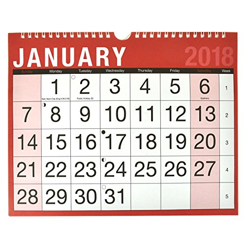 2018 Easy View Read Wall Calendar Slim Calendar Large Print Day Daily Week Month Year Academic School Planner Keep Up To Date With Work Office Staff Holidays ASAB - 1 Pack