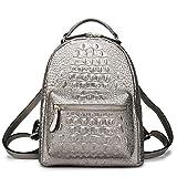 Rucksack Dame Elegante Silber Damen Rucksack Kleine Elegante Damen Umhängetasche Rucksack Silber 26 * 11 * 28Cm