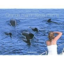 Grands mammifères marins du littoral méditerrannéen occidental