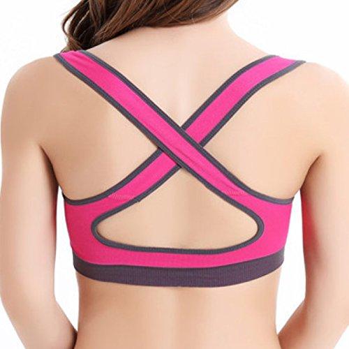 Les Ajustements Sans Couture De Soutien-gorge De Sports De Yoga Rassemblent Des Sous-vêtements Exécutant Le Gilet De Forme Physique pink