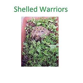 Shelled Warriors Tortoise 7000 seed mix 5g 63 species of plants/flowers 10