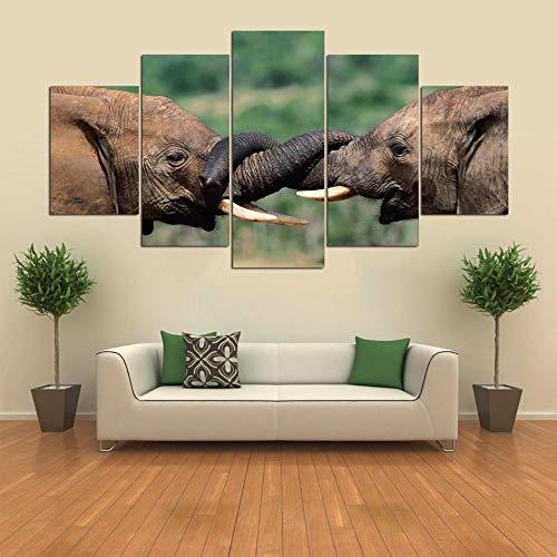 Kitely Canvas prints Impresiones De Lienzo 5 Piezas 150X80 Cm Combinación Decorativa...
