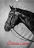 Portraits Equins 2017: Portraits En Noir Et Blanc De Chevaux