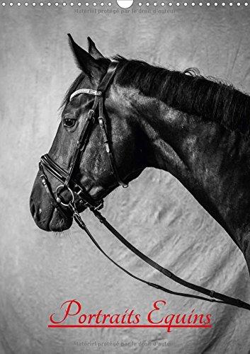 Portraits Equins 2017: Portraits En Noir Et Blanc De Chevaux par Xavier Bertrand