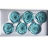 Ancdream 6 Echte, Konservierte Rosenköpfe; Blütenfarbe Blau