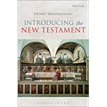 Introducing the New Testament (English Edition)