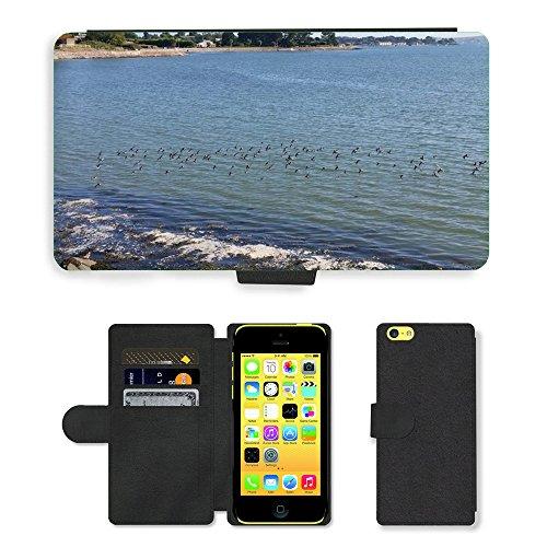 Just Mobile pour Hot Style Téléphone portable étui portefeuille en cuir PU avec fente pour carte//m00138312Oiseaux Volant Plage Paysage/LAN/Apple iPhone 5C