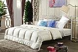 Warme Duo Winter-Qualitäts-Bettdecke Für Die Kalte Jahreszeit, Soft-Komfort-Bettdecke, Kochfeste Steppdecke, Atmungsaktiv Wärmeausgleichend,OneColor-150 * 215cm/2.85KG
