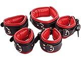 Bondage Manschetten Set gepolstert und abschließbar Leder Fesseln Set Handfesseln