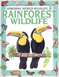 Rainforest Wildlife (Usborne World Wildlife)