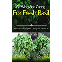Growing And Caring For Fresh Basil: How To Growing And Caring For Fresh Basil (English Edition)