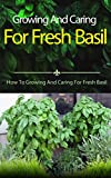 Growing And Caring For Fresh Basil: How To Growing And Caring For Fresh Basil