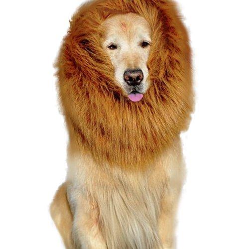 e Mähn Perücke Große Hund Kleider Haar Schal für Hund (Hund Kostüm Löwe)