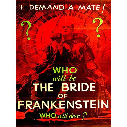 MOVIE FILM BRIDE FRANKENSTEIN MONSTER KARLOFF HORROR USA FINE ART PRINT POSTER 30x40cm CC430 -