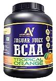 Arms Nutrition Jaguar Juice BCAA (Tropical Orange) 240gm 30 Servings with Taurine